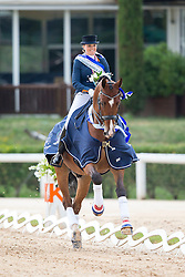 Meulendijks Anne (NED) - President's MDH Avanti<br /> European Championships Dressage Junior and Young Riders 2014<br /> © Hippo Foto - Leanjo de Koster