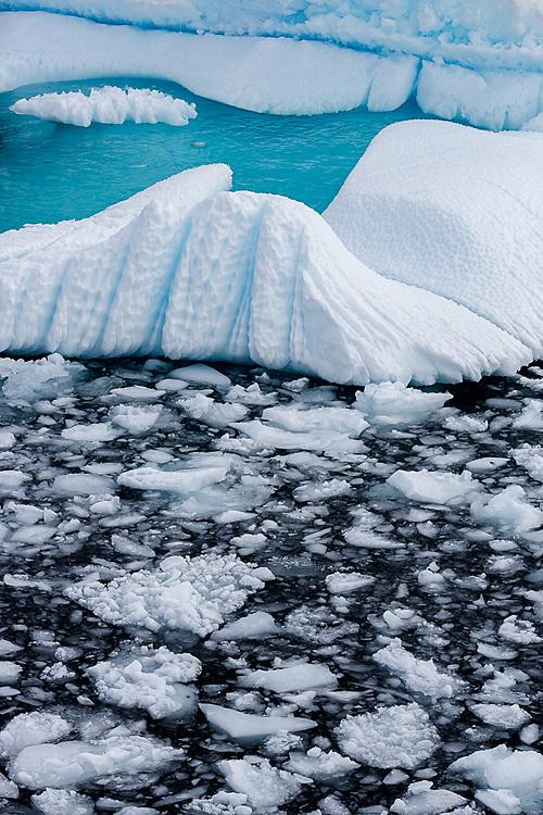 Icebergs, Cierva Cove, Antarctic Peninsula, Antarctica  2014