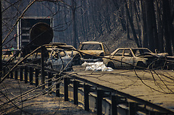 June 18, 2017  - Figueiro dos Vinhos, Portugal - Corpses lie on the road where 25 people have been killed. A raging forest fire in central Portugal killed at least 62 people as they desperately tried to flee, charring cars and trucks as it swept over roads. The disaster, the worst tragedy Portugal has experienced in decades shook the nation. (Credit Image: © Atlantico Press via ZUMA Wire)