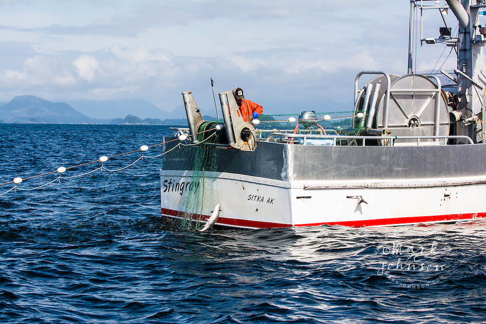 Salmon fishing, Sitka Sound, Sitka, Baranof Island, Southeast Alaska, USA