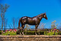 A statue of Distorted Humor, Winstar Farm, Versailles (Lexington), Kentucky.