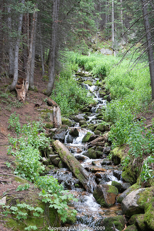 Glacier Creek, near Tourquoise Lake, Leadville, CO.
