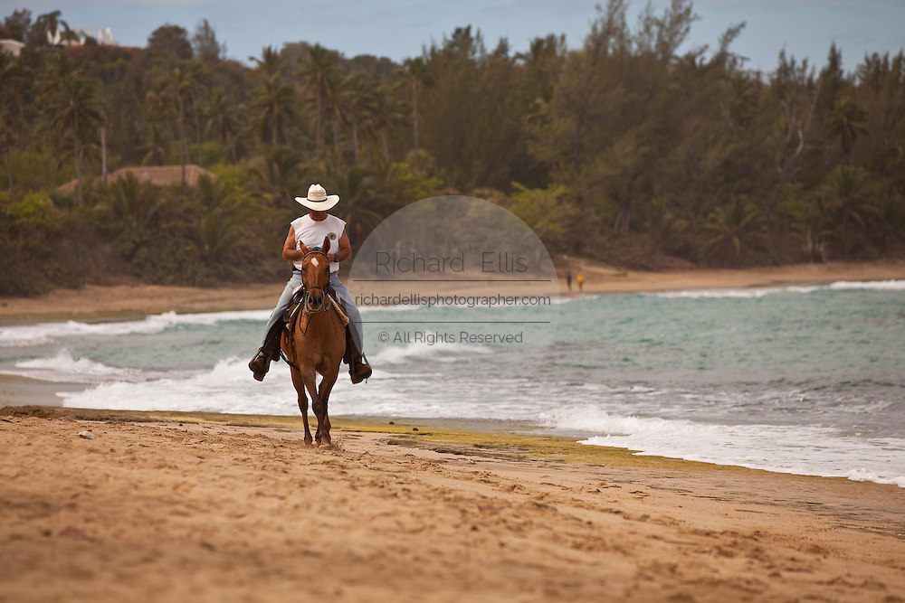 A horse rider on Playa Shacks beach in Isabela Puerto Rico