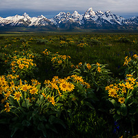 Grand Tetons, Grand Teton National Park, Wyoming.