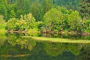 River reflection<br />Terrace<br />British Columbia<br />Canada