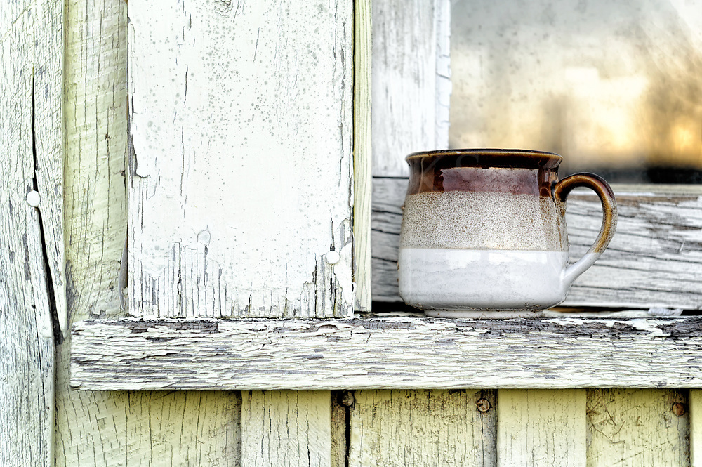This is a still life of an old fashioned coffee mug sitting outside on the windowsill of a green house. It becomes unique in it's relative plainness.