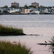 September 9, 2012 - Queens, NY : Stretching across more than 9,000 acres, Jamaica Bay Wildlife Refuge --part of the Gateway National Recreation Area -- contains fresh and salt water habitats teeming with wildlife. The 1.5-mile West Pond Trail provides a good vantage point for bird watching and boasts a picturesque view of the Manhattan skyline. Pictured here, a view of Broad Channell, from the West Pond Trail -- a juvenile yellow crowned night heron is visible in the foreground. CREDIT: Karsten Moran for The New York Times