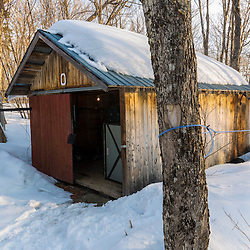 Sap lines entering a pump house in the LaRiviere sugarbush in Big Six Township, Maine.