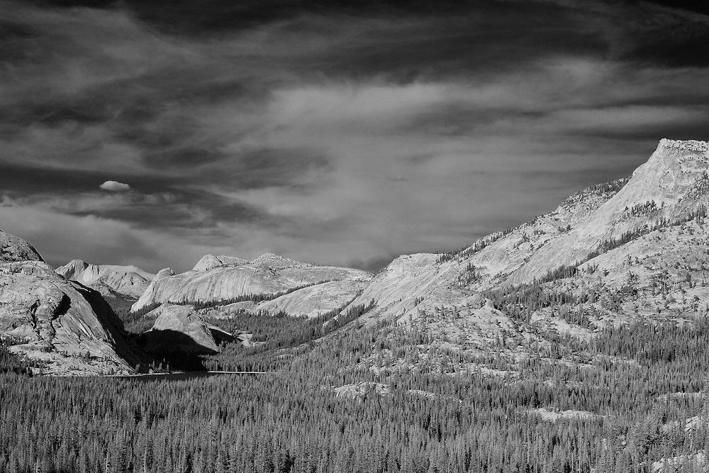 Tenaya Lake View From Olmsted Point - Yosemite - Black & White