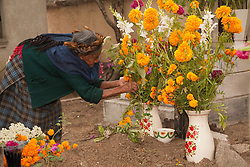North America, Mexico, Oaxaca Province, Teotitlan del Valle, old woman arranging flowers on grave at cemetery during Day of the Dead (Dias de los Muertos) celebration