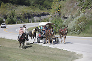 """Scouting trip for Picture Kentucky - Lee County, Beatyville with David Stephenson, Thursday, Sept. 09, 2010 at Lee County in Beatyville. <br /> <br /> Dewey Henson, left, riding """"Cash"""" Ben Webb riding """"Tin Man"""" Danny Grubb and Roger Webb, right, all from Manchester, Ky., traveled back home on KY-11 in Lee County from a trip to the Red River Gorge."""