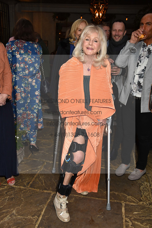 Liz Brewer at The Ivy Chelsea Garden's Annual Summer Garden Party, The Ivy Chelsea Garden, 197 King's Road, London England. 9 May 2017.<br /> Photo by Dominic O'Neill/SilverHub 0203 174 1069 sales@silverhubmedia.com