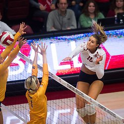 Women's Volleyball v. CAL