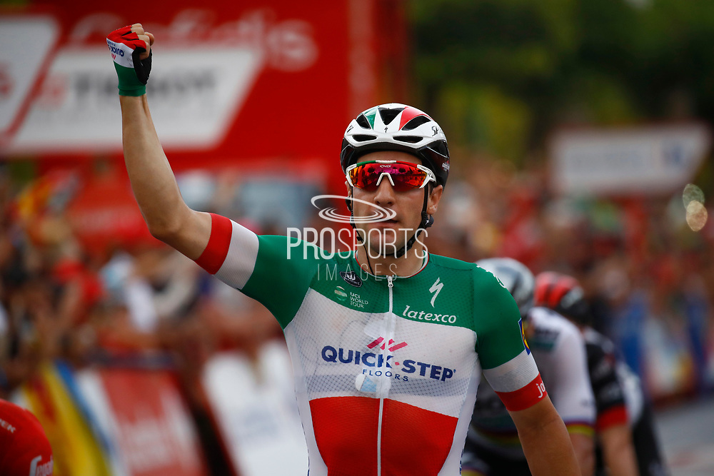 Arrival, Elia Viviani (ITA - QuickStep - Floors) winner, during the UCI World Tour, Tour of Spain (Vuelta) 2018, Stage 3, Mijas - Alhaurin de la Torre 178,2 km in Spain, on August 27th, 2018 - Photo Luca Bettini / BettiniPhoto / ProSportsImages / DPPI