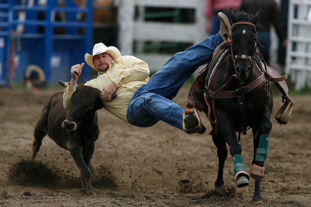 062109-Evergreen, Colo.-steerwrestling-Scott DorenKamp from Bristol , CO dives from his horse to wrestle a steer during the 2009 Evergreen Rodeo PRCA Steer Wrestling Competition Sunday, June 21, 2009 at The Evergreen Rodeo Grounds..Photo By Matthew Jonas/Evergreen Newspapers/Photo Editor