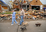 23 APRIL 2011 -- BRIDGETON, Mo. -- Residents in the Harmann Estates subdivision walk their dogs through damages homes on Beaverton Drive in Bridgeton, Mo. Saturday, April 23, 2011. The homes were damaged and destroyed in an apparent tornado that struck the community Friday, April 22, 2011. Image © copyright 2011 Sid Hastings.
