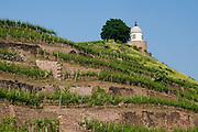 Weingut Schloss Wackerbarth, Pavillon in den Weinbergen, Radebeul bei Dresden, Sachsen, Deutschland.|.Castle Wackerbarth, vinery, pavillon n the vineyards in Radebeul near Dresden, Germany