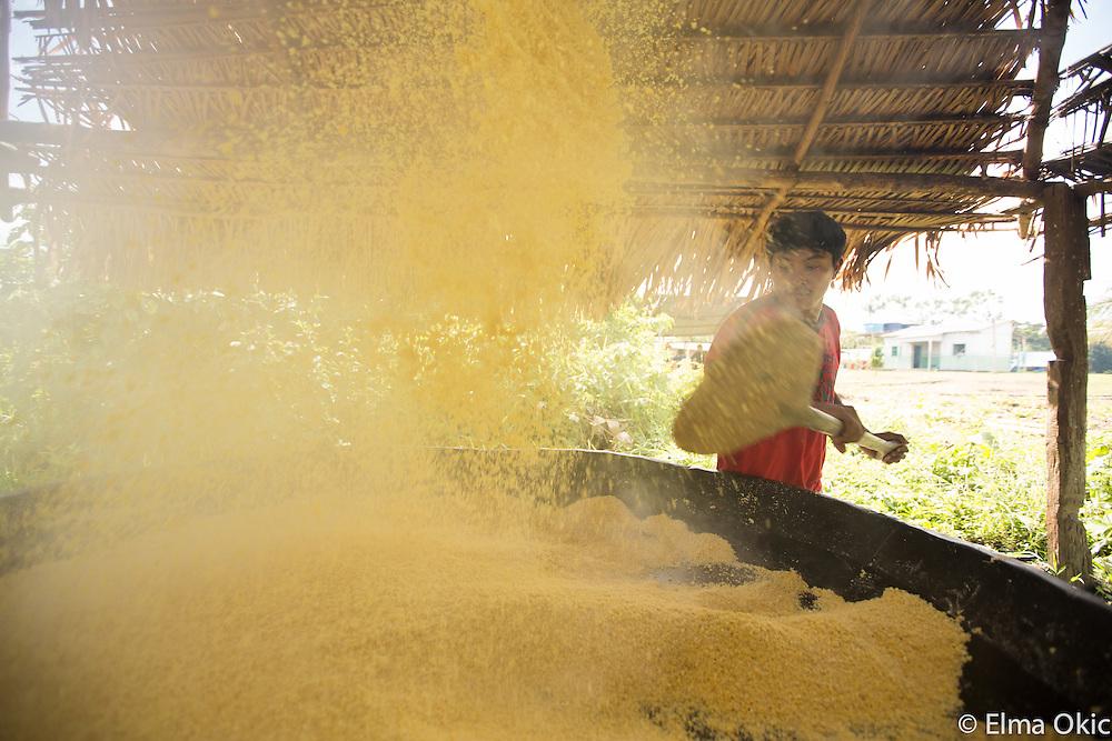 Preparation of the cassava or manioc flour at Sawre Muybu, a Munduruku indigenous community on the Tapajos River, Para, Brazil.