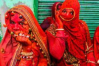 She males (men dressed as women), Lathmar Holi (Holi, Festival of Colors), Nandgaon, near Mathura, Uttar Pradesh, India.