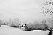 Infrared (IR) image - Rural Kentucky horse farm.  This farm was located just a few miles from my house in Lexington and is one of the few examples of a modest looking horse barn in the region.