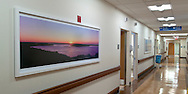 Art Work Peconic Bay Medical Center