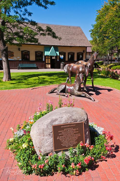Bronze horse statue at Bradshaw Circle, Durango, Colorado