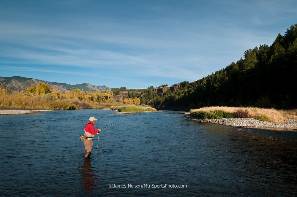 Mike Towler fly fishes for trout during a fall afternoon on the South Fork of the Snake River, Idaho.