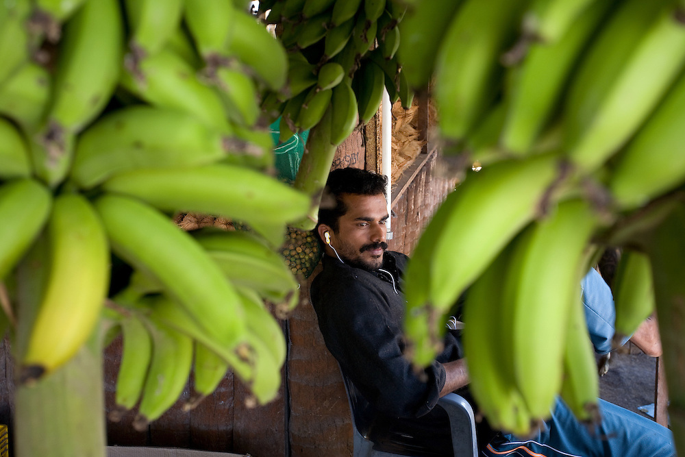 OMAN Sultanat; Arabische Halbinsel, Golf von Oman; Tourismus; im SÜDEN in SALALAH; Mann (aus Indien) verkauft Bananen; OMAN, SALALAH, man selling fruits, Bananas; 14.03.2008
