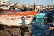 Durante los meses de verano cuando la &ldquo;mancha&rdquo; de calamar gigante se acerca al pueblo de Santa Rosal&iacute;a en el Golfo de California, cientos de pescadores provenientes de otros estados de M&eacute;xico como Sonora, Sinaloa, Guerrero, arriban para dedicarse a su explotaci&oacute;n. <br /> <br /> &Eacute;sta es una actividad muy ardua, completamnete manual y desarrollada siempre por la noche, <br /> ya que se utiliza luz para atraer a este gran molusco. El sistema de permisionarios y los bajos precios de compra que manejan las empacadoras coreanas, ofrece pocas posibilidades de empleo digno, y a menudo, <br /> los trabajadores caen tambi&eacute;n en el consumo de cristal, que es com&uacute;nmente usado para permanecer despiertos durante varias jornadas nocturnas seguidas.