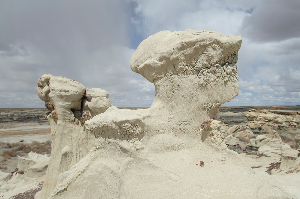 Alien head sandstone formation, Bisti Badlands, Bisti/De-Na-Zin Wilderness, New Mexico