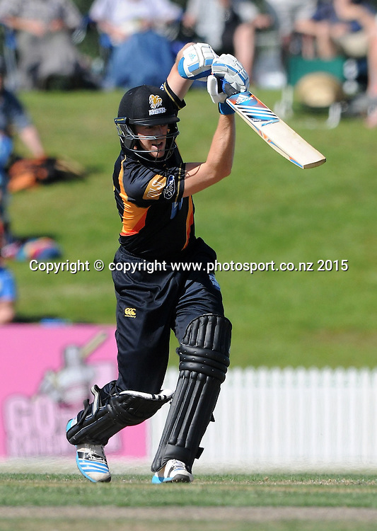 Wellington Firebird's Michael Pollard plays a shot in the Ford Trophy One Day cricket match, Knights v Firebirds, Bay Oval, Mt Maunganui, Thursday, January 01, 2015. Photo: Kerry Marshall / photosport.co.nz