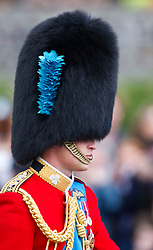 LONDON - UK - 15 JUNE 2013: Prince William<br />  Members of the British Royal Family join HM Queen Elizabeth for the annual Trooping The Colour Ceremony to mark the Queen's Official Birthday. The Queen and members of the family travelled by carriage to Horseguards for the ceremonial parade before joining her on the balcony of Buckingham Palace.<br /> The Duke of Edinburgh who normally accompanies the Queen was absent as he is still in hospital recovering from an operation.<br /> Photograph by Ian Jones.