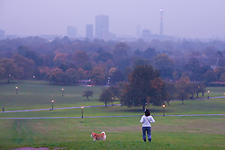 Primrose Hill, London, October 30th. As mist shrouds London's skline, fitness fanatics run and work out on Primrose Hill. Pictured: A dog walker enjoys the early morning view.