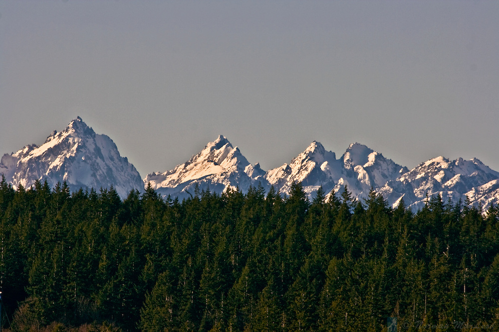 The Olympic Mountains stand out in this morning shot over Indian Island from Marrowstone Island in Washington's North Puget Sound region