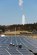 Staff lay electrical cabes at the Minamisoma Agri-Solar Park in Minamisoma, Fukushima, Japan on 10 Feb 2013. More than 2,000 solar panels will power the domes, inside which farmers affected by the 2011 tsunami and nuclear accident will be able to grow produce. Excess power will be sold to a local utilities company. .Photographer: Robert Gilhooly