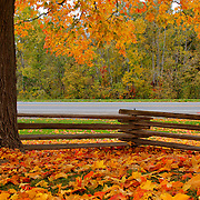 """Within this Fence""<br />
