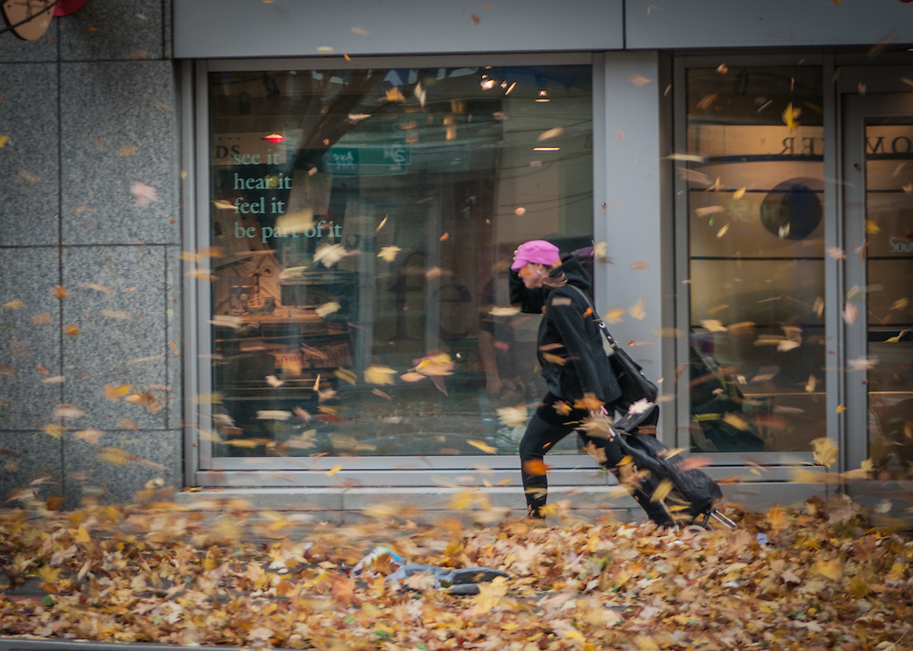 A woman in a pink hat braves a wind storm in Seattle