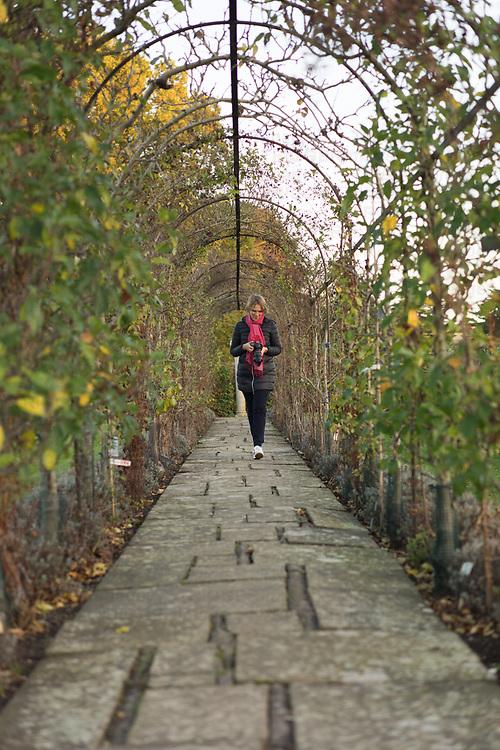 Lone female in garden walkong along a path