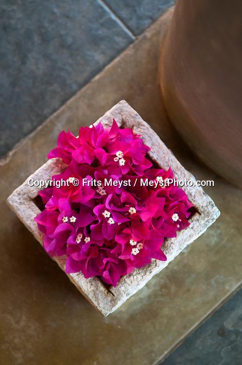 Sigiriya, Sri Lanka, September 2011. Ayurveda wellsness, medicine and massage are available in Hotel Sigiriya.  Photo by Frits Meyst/Adventure4ever.com