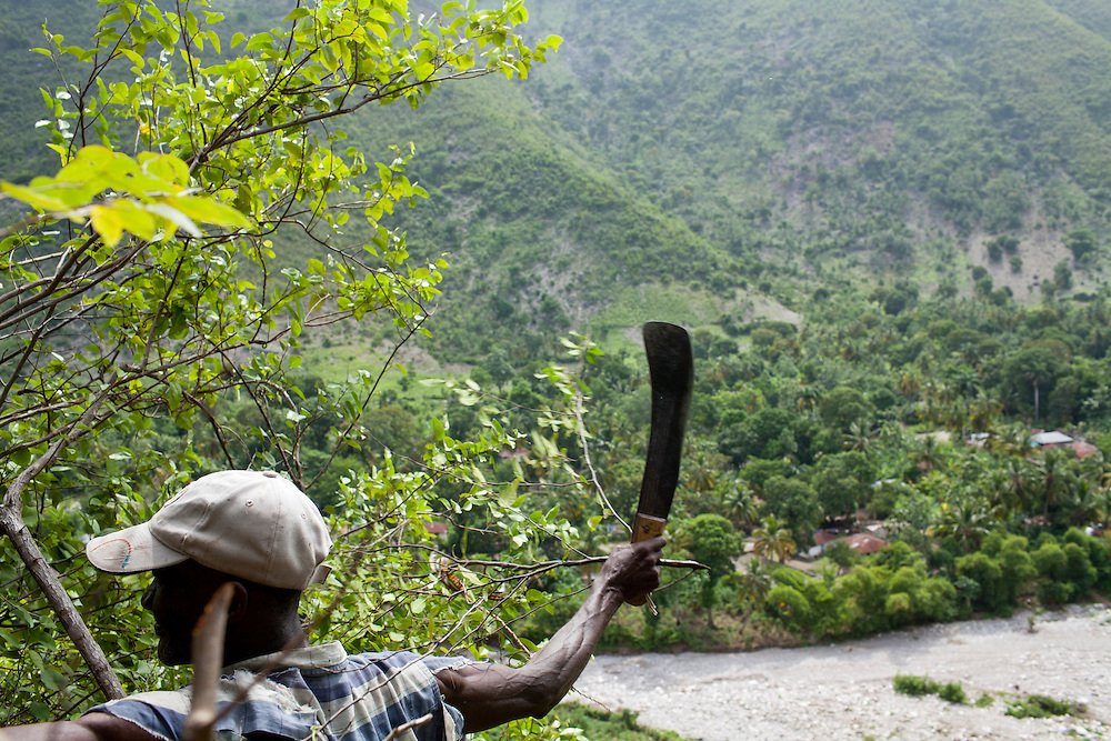 Sale Bien Louissant chops wood to make charcoal on the side of Mornediable mountain on July 16, 2010 in Corail Henri, Haiti.
