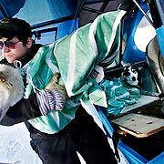 Ian Stewart/Yukon News<br /> Yukon Quest Air Force pilot Zack Knaebel unloads a dropped dog flown in from Slaven's Cabin at the airstrip in Eagle, Alaska.