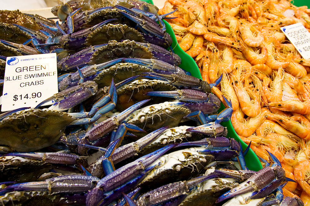 Green Blue Swimmer crabs and cooked Tiger prawns for sale at Sydney Fish Market, Darling Harbour, Australia