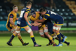 John Hawkins of Bristol Rugby is tackled by Charlie Hewitt of Worcester Warriors - Rogan Thomson/JMP - 04/11/2016 - RUGBY UNION - Sixways Stadium - Worcester, England - Worcester Warriors v Bristol Rugby - The Anglo Welsh Cup.