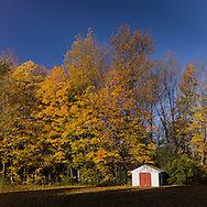 http://Duncan.co/shed-and-fall-color