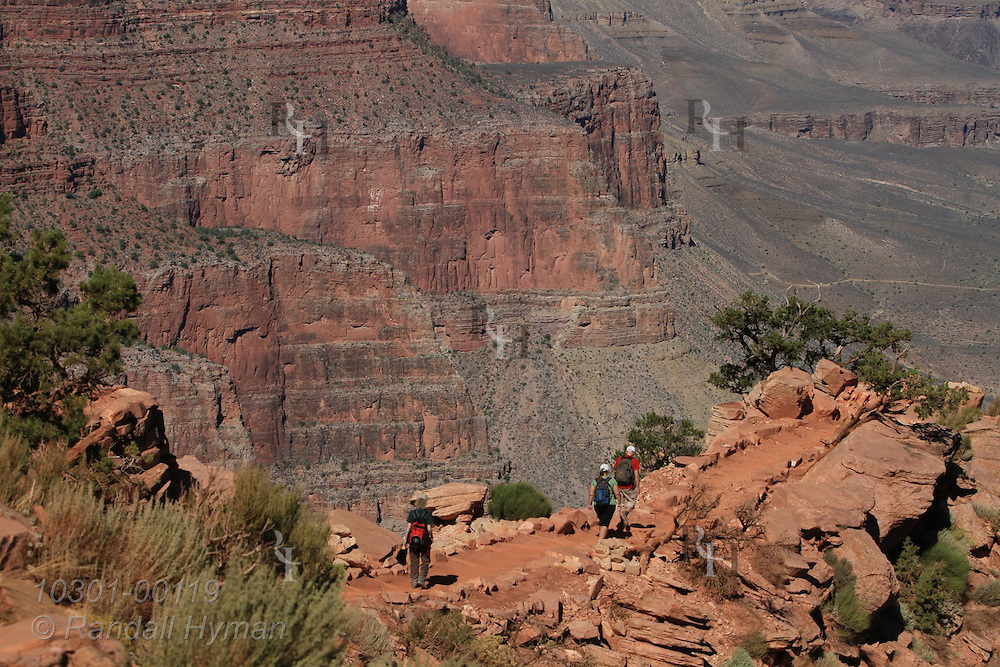 Hikers descend South Kaibab Trail through red dirt of the Hermit Formation; Grand Canyon National Park, Arizona.