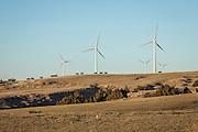 Windfarm, northeastern Colorado