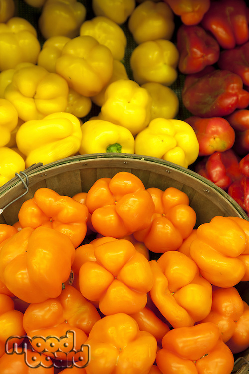 Multicolored capsicum on display in market
