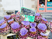 "Rennes, FRANCE.   Saturday Morning Market, ""Artichokes"",  on display  Brittany. Located.  Marché des Lices Town hall square. Rennes Old quarter, Brittany.<br /> <br /> Saturday  26/09/2009<br /> <br /> © Peter SPURRIER<br /> NIKON - COOLPIX P6000 - 1/115 - f3.2  8.3MB MB"