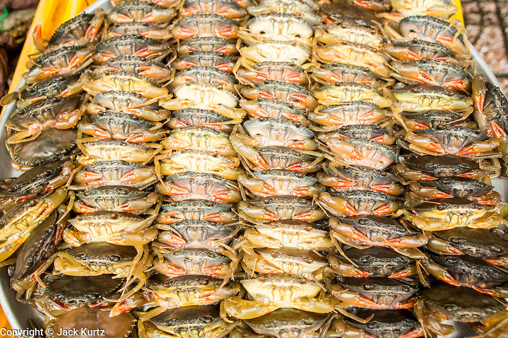 27 MARCH 2012 - HO CHI MINH CITY, VIETNAM:  Fresh crabs for sale in Ben Thanh Market, the main market in Ho Chi Minh City, Vietnam. The market has become the main tourist market. Ho Chi Minh City, which used to be known as Saigon, is the largest city in Vietnam and the commercial hub of southern Vietnam.      PHOTO BY JACK KURTZ