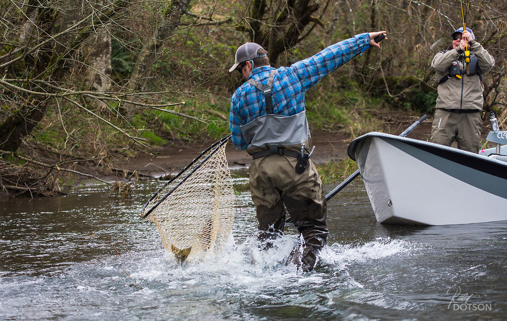 Justin Crump nets the first ever steelhead for the angler.